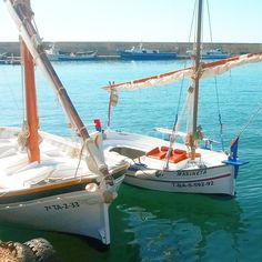 #ametllademar #ametllamar #terresdelebre #tarragona #catalunya #catalogne #cataluña #catalonia #pesca #fishing #pêche #platja #playa #plage #beach #estiu #verano #été #summer #sun #vacances #vacaciones #holiday #traveling #viajes #travel #visit #eatheword #vamosdeviaje #voyage #escapadas #experiences #traveller #food #gastronomia #gastronomy # happyholidays #mediterrani #mediterraneo #mediterranean #visiting #vacation #trip #tourism #tourist