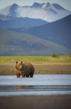 Katmai National Park — Alaska