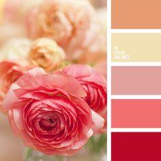 ideas wedding colors peach shades for 2019 Colour Schemes, Color Trends, Color Combos, Color Patterns, Color Blending, Color Mixing, Decoration Palette, Beige Color Palette, Color Balance
