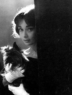 Audrey Hepburn.. backlit with her puppy