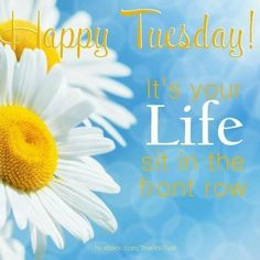 Happy Tuesday Its Your Life good morning tuesday tuesday quotes good morning quotes happy tuesday tuesday quote happy tuesday quotes good morning tuesday beautiful tuesday quotes Tuesday Quotes Good Morning, Happy Tuesday Quotes, Tuesday Humor, Good Night Quotes, Morning Humor, Morning Sayings, Monday Quotes, Wednesday Morning, Thursday
