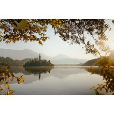 Wiecej zdjęć z tego niesamowitego miejsca możecie zobaczyć na blogu :) #sLOVEnia #ifeelsLOVEnia #visitslovenia #thisisslovenia #igslovenia #bledlake #lakebled #slovenia #kampadanes #beautifuldestinations #igslovenia #place #traveler #photographer #travelphotos #architecture #slovenia #lakebled #instagood #archilovers
