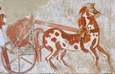 "[EGYPT 29328]<br /> 'Chariot in Menna's tomb at Luxor.'<br /> <br /> 	Menna's chariot is depicted on one of the walls of his tomb. Menna was an 18th dynasty inspector of estates and overseer of harvests. His tomb (TT 69) is located in the Sheikh Abd el Qurnah Necropolis on the Westbank at Luxor. It is one of the socalled ""Tombs of the Nobles"" and dates to the end of the reign of Thutmosis IV and the beginning of the reign of Amenhotep III. Photo Mick Palarczyk and Paul Smit."