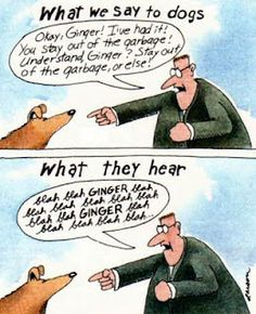 Cartoon by Gary Larson. My Boxer never took me seriously either.
