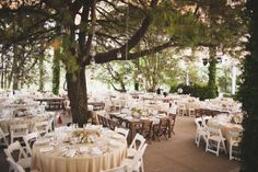 Woodsy wedding reception