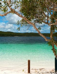 Fraser Island, Lake Mc Kenzie