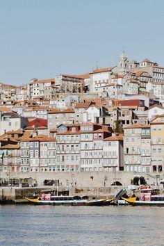 Porto, Portugal | the hanging plants