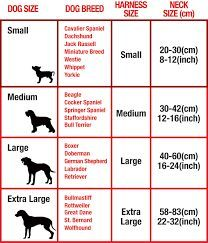 Dog Collar Size Chart Cm Google Search Dog Collar Size Dog