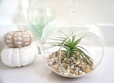 h ngende glas blumenvase vase f r h ngedeko. Black Bedroom Furniture Sets. Home Design Ideas