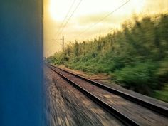 Train susine