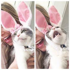 """For Christ's sake, Helen, Easter was WEEKS ago!"""