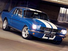 The Sexiest Mustangs Daily http://hot-cars.org/