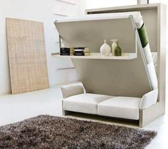 Folding bed/sofa/shelving unit.