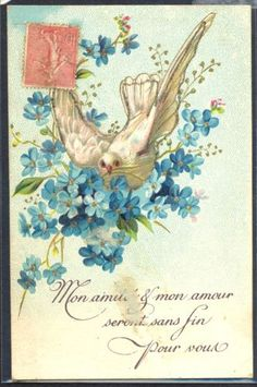 NC090-COLOMBE-MYOSOTIS-DOVE-FORGET-ME-NOT-FANTAISIE-Belle-LITHO