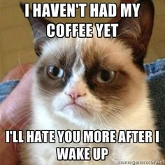 Grumpy Kitteh will still hate you after morning coffee.