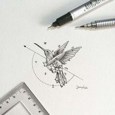 Geometric idea for seagull