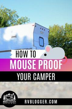 Camper Life, Rv Campers, Rv Life, Teardrop Campers, Teardrop Trailer, Happy Campers, Camper Van, Rv Camping Tips, Travel Trailer Camping