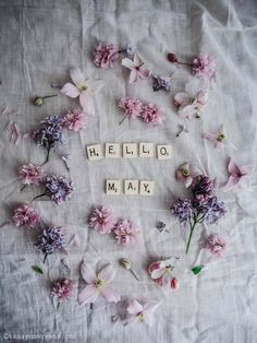 Hello May | Floral flatlay by Tamsyn Morgans