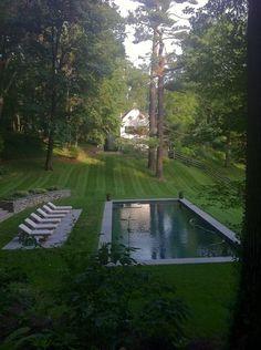 love this backyard & garden pool!!