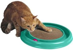 "$11.99-$19.99 The Turbo Scratcher cat toy offers hours of fun and exercise for your cat while reducing potential furniture damage due to scratching. Catnip and ball included. Scratch pad is replaceable. 16"" Diameter x 1.88"""