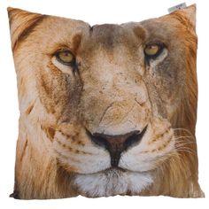 CUSH84 - Cuscino con Imbottitura - Leone - 50x50cm | Puckator IT  #cushion #complementiarredo #cuscini #zoo #animal #lover