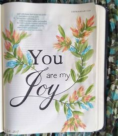 """43 Likes, 1 Comments - Rhonda's Bible Journal (@rhondasbiblejournal) on Instagram: """"Zephaniah 3:14-20 Joy and happiness are NOT the same thing. Happiness depends on happenings, joy…"""""""
