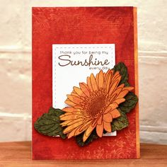handmade greeting card from Dreams & Other Realities . luv the rich rusty reds and oranges . Gerbera Flower, Sunflower Cards, Gerber Daisies, Clear Stamps, Greeting Cards Handmade, My Sunshine, I Card, Daisy, Card Making