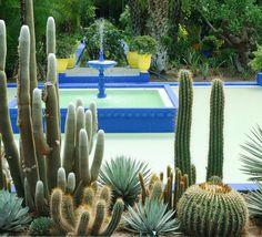 Jardim Majorelle, Marrakech. Tiffany, Pantone, Marrakech, Decoration, Cactus Plants, Outdoor Decor, Home Decor, Gardens, Morocco