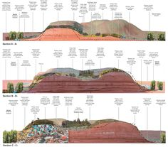 Rollover Images: Hiriya masterplan proposals: Sections through clay model and concept for a Tropical Butterfly House