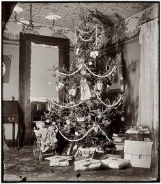 Wilbur & Orville Wright's Christmas tree 1900
