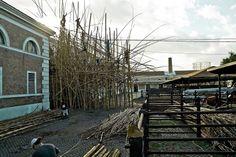 mike and doug starn: big bambu at MACRO in rome for enel contemporanea