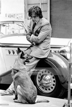 """""""Delon no ama a los perros. Los adora. Amor y necesidad, necesidad y pasión. Como su """"hijo"""" Jado..."""" (Jean Cau)       Jad..."""