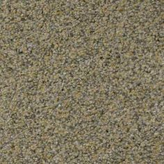 VENECIA WATERFALL Texture TruSoft® Carpet - STAINMASTER®