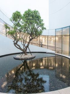 The sales center for a residential community circles a tranquil courtyard. Vanke Sales House, Xiamen. Design by AECOM.