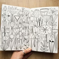Monthly sketchbook challenge. January 2016 - Day 12: tulip