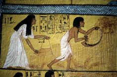 The Harvest - Sennedjem and his wife Iy-neferti | Mural from the tomb of Sennedjem, Deir el-Medina (TT 1), Western Thebes (Egypt). Egyptian Art, New Kingdom, 19th Dynasty, reign of Seti I / Ramses II, c. 1290 BC.