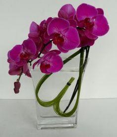 Valentine floral