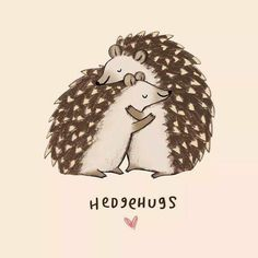• for happy you can have some hedgehugs •