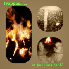 Trapped or Deceived?