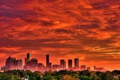 I'd know that skyline anywhere.  A beautiful summer sky over the Houston skyline.  Houston, you'll always be home to me.