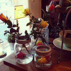Norgesglass med friske roser. .delikate
