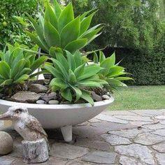 Bowl Concrete Planters , Concrete Garden Planters In Garden And Lawn Category