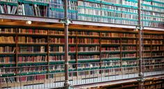 Fair use prevails as Supreme Court rejects Google Books copyright case