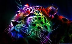 Colourful! :)