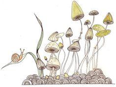 Mushrooms! Pencil, pen, watercolor