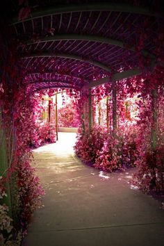 I love beautiful places and choose dreamy places in these images. These are the most lovely places in the world, I think. beautiful jewelry diy 101 Backyard Landscaping Ideas for Your Home (Photos) Beautiful World, Beautiful Gardens, Beautiful Places, Beautiful Pictures, Beautiful Beautiful, Dream Images, Inspiring Pictures, Most Beautiful Flowers, Beautiful Scenery