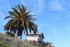 Pendant ce temps à Santa Cruz: baie de monterey