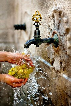 I love this shot! The faucet is perfection and the capture of the water is wonderful. So simple, but the rustic background is so lovely. The element of human hands is wonderful.