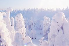 Winter Wonderland, Around The Worlds, Snow, Outdoor, Outdoors, The Great Outdoors, Eyes, Let It Snow