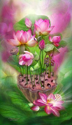 Healing Lotus - Crown Mixed Media